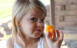 10 Fun Ways to Motivate Your Children to Eat More Fruits & Veggies