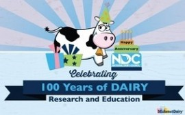 Ten Things I Love About Dairy!