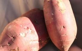Sweet Potato + Chili = One Pot Meal