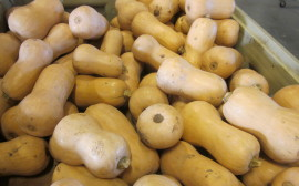 Roasting Fall Vegetables